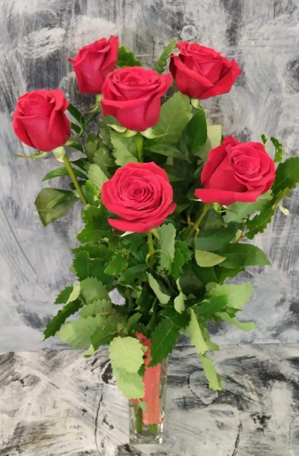 6 roses vermelles